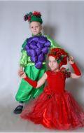 Костюм Вишня и Виноград; Артикулы Вш3 и Ст3 + виноград
