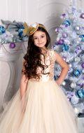 Бальное платье золотистое расшитое и Фрак серый;  Артикул Б58 и Фс5